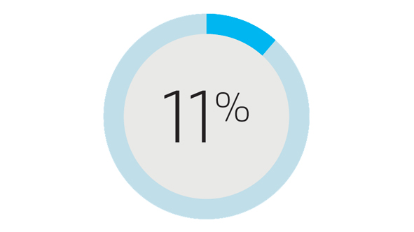 11% other